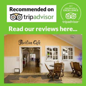 TripAdvisor Review Image 2017