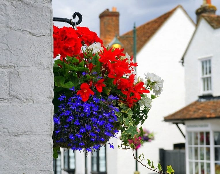 Create summer hanging baskets in May