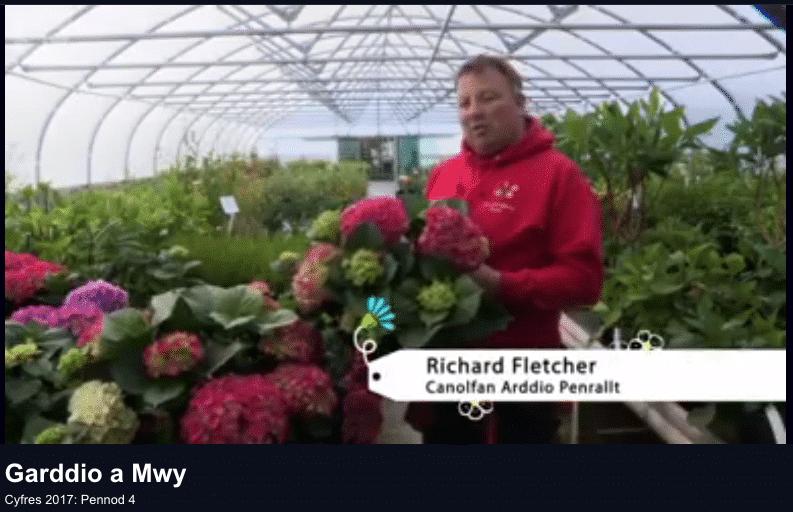 Richard on Garddio a Mwy S4C 5 June 2017