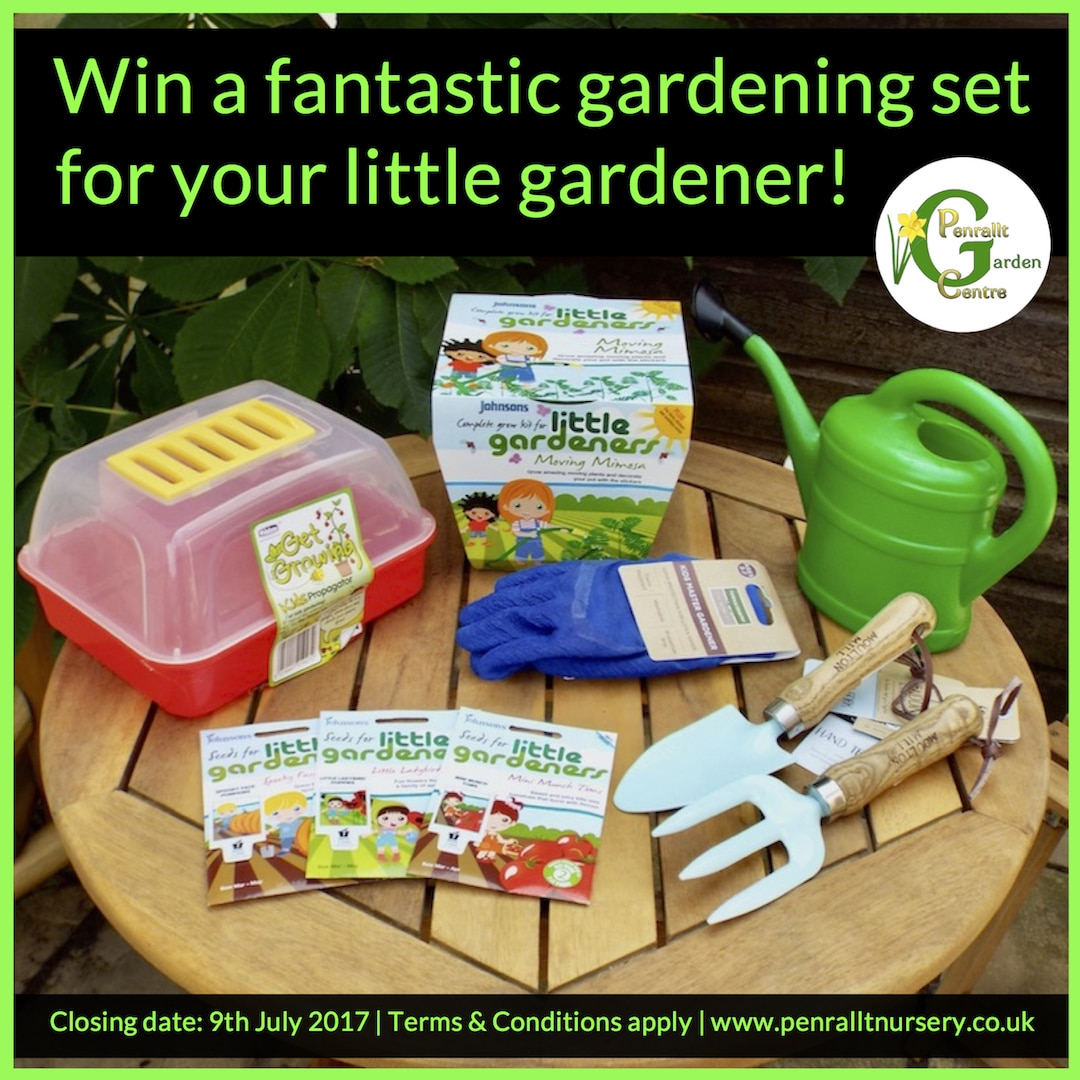 Win a fantastic children's gardening set