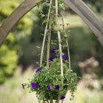 Zest Hanging Flower Bell