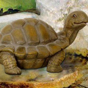 Tortoise Spitter