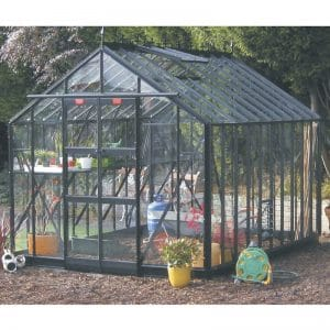 8′5″ Wide Thyme Dwarf Wall Elite Greenhouse
